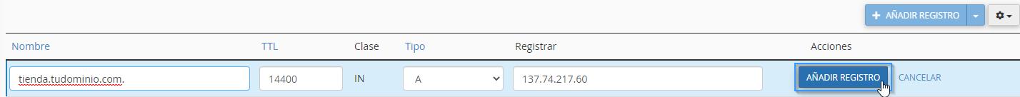 Añadir los valores de un registro DNS en cPanel