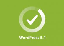 Nueva actualización: WordPress 5.1