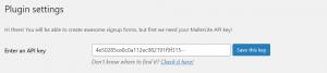 Pegar la clave API de MailerLite en WordPress