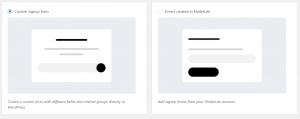 Tipos de formulario de suscripción en WordPress