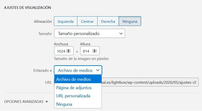 Cómo enlazar una imagen al archivo de medios de WordPress