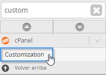 Abrir la herramienta de customización de WHM